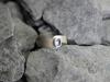 thumbs ring zilver regenboog maansteen Ringen