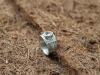 thumbs zilver aquamarijn ring 2 Ringen