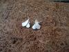 thumbs zilveren oorstekers oorsieraden