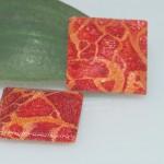 schuimkoraal vierkant 150x150 Nieuwsbrief Januari 2012